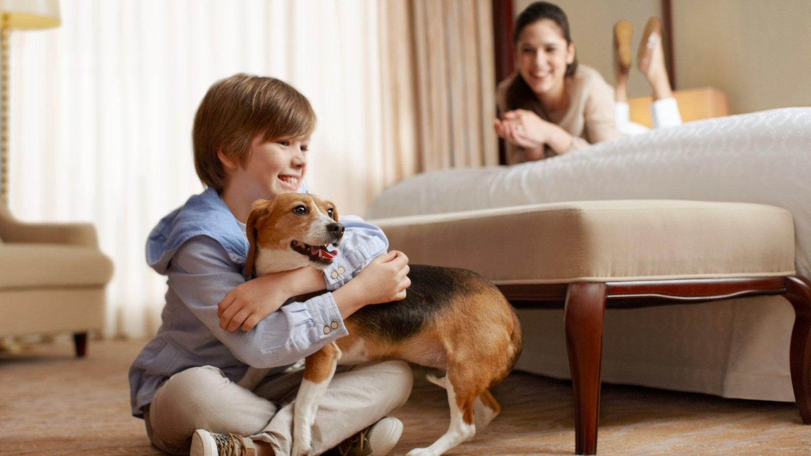 Sheraton Fisherman's Wharf Hotel - Pet Friendly Hotel